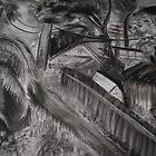 Queenstown Tas. Landscape by DeniseKMitchell