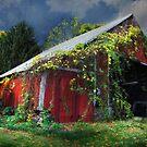 Adams County Winery by Lori Deiter
