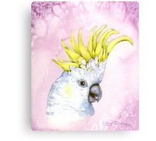 George~ the Sulfur-Crested Cockatoo Canvas Print