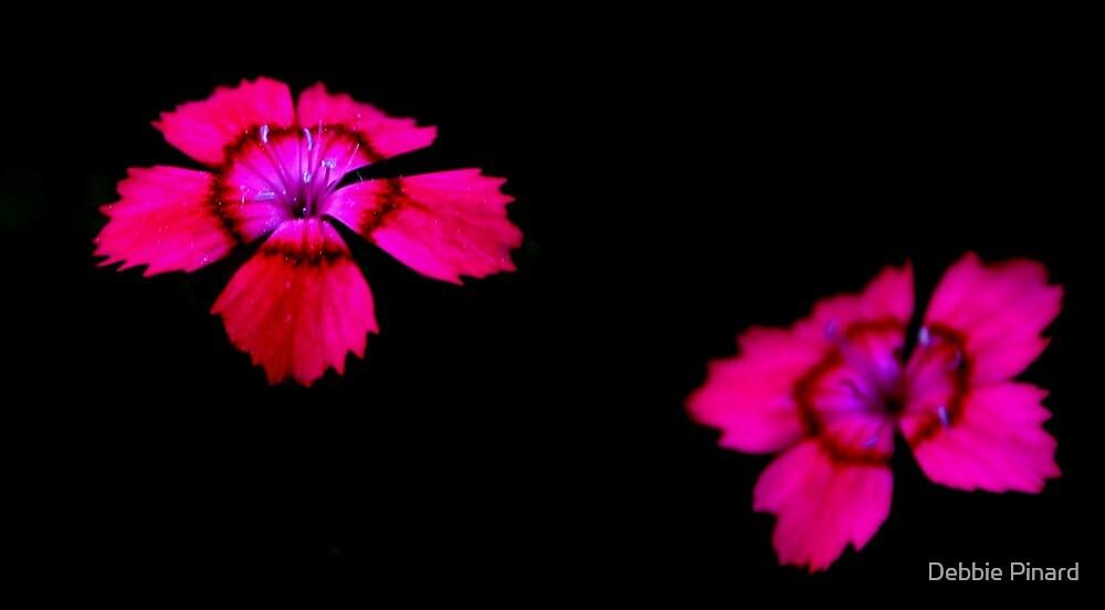 Floating Flowers 3 by Debbie Pinard