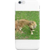 Yawning Lion iPhone Case/Skin
