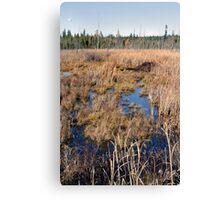 The Beaver Dam - Dunrobin Ontario Canvas Print