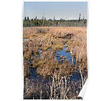 The Beaver Dam - Dunrobin Ontario Poster