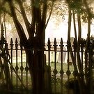 Haunted Cemetary by Laney Lane