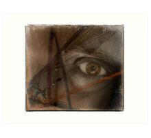 insect eye Art Print
