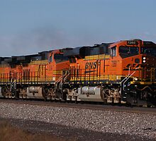BNSF Engine by auprospector