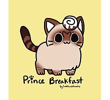 Sweet Treat Kitties - Prince Breakfast (special) Photographic Print