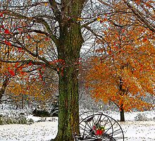 To Everything There is a Season by Diane E. Berry