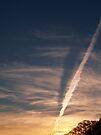 The Shadow of your Smile... No, that's a Contrail!   by BCallahan