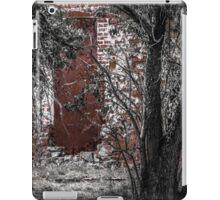 Hidden Ruin iPad Case/Skin