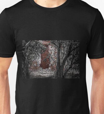 Hidden Ruin Unisex T-Shirt
