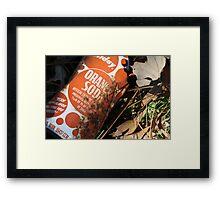 Orange Soda Framed Print