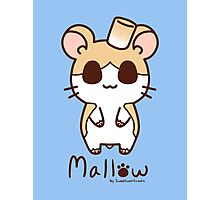 Sweet Treat Friends - Mallow the Hamster Photographic Print