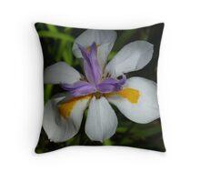 Dietes Grandiflora Throw Pillow