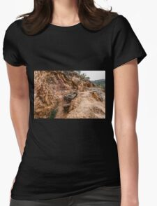Abandoned Gold Mine Womens Fitted T-Shirt