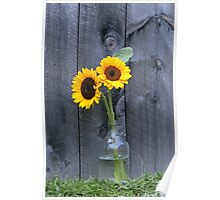 Sun Flowers ~ Yellow Flower Country Style Poster