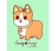 Sweet Treat Friends - Candy Corgi the Dog Photographic Print