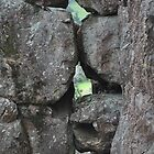 rock formations by sarbi