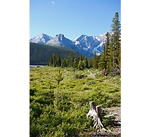 Mountains and forests Photographic Print