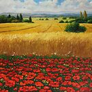 Field Of Poppies by Aziz Mohammed