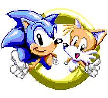 Sonic Photographic Print