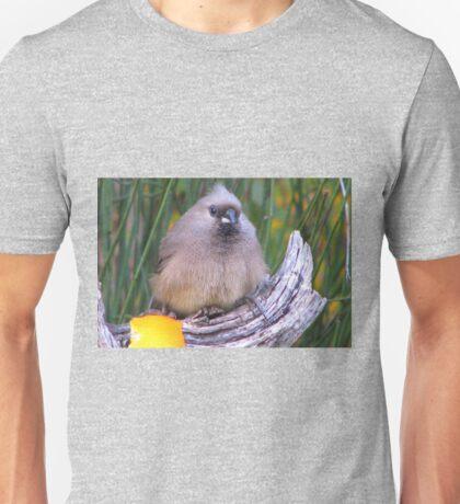 Muisvoël / Mousebird. Unisex T-Shirt