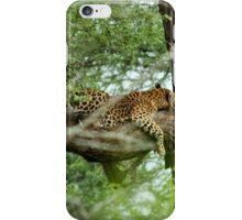 COMFORT ZONE? -  THE LEOPARD – Panthera pardus iPhone Case/Skin