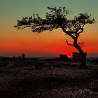 Sunset, Geelong (Australia)  by peterperfect
