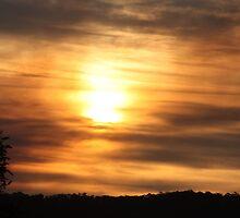 sun by oshytaylor