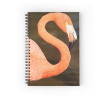 Flamingo Beauty Spiral Notebook