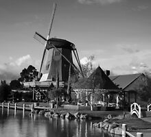 Windmill Mono by peterperfect