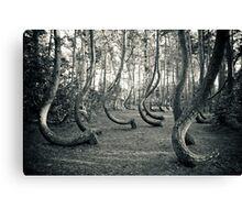 Curved Forest Canvas Print