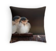 Welcome Swallow Chicks Throw Pillow