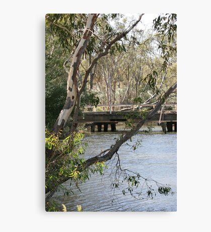 Tranquil Bush Scene in Victoria Canvas Print