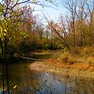 October's End on Blacklick Creek by bicyclegirl