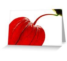 Physalis alkekengi Greeting Card