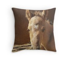 Who you lookin At Throw Pillow
