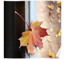 Fall. II Poster