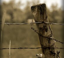 Simpler Times - Lonely Post With Barb Wire by tc5953