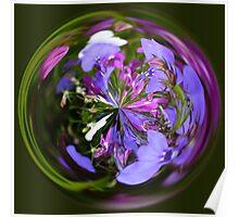 Spherical Lobelia Poster