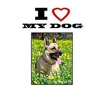 I Love MY DOG - Jersey Girl Photographic Print