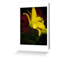 Low-key Yellow Lily Greeting Card