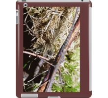 Stick insect Phasme story  4  (c)(t) by Olao-Olavia / Okaio Créations fz 1000 iPad Case/Skin
