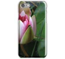 Water lily and it's owner iPhone Case/Skin