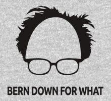 Bernie Sanders Bern Down For What  by omgcoolstuff