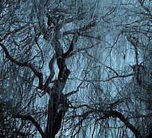 Blue tree monochrome autumn willow by Katarzyna Rychlicka