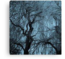 Blue tree monochrome autumn willow Canvas Print