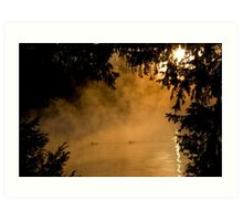 Ducks in the mist Art Print