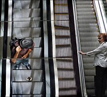 escalator stares by carol brandt