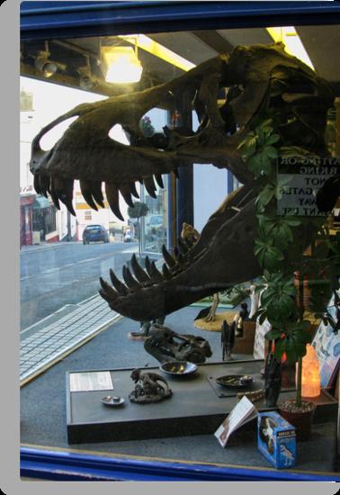 Shopping For Dinosaurs by lynn carter